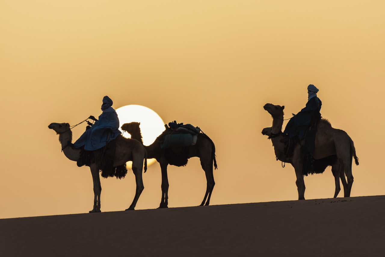 how many camels am I worth